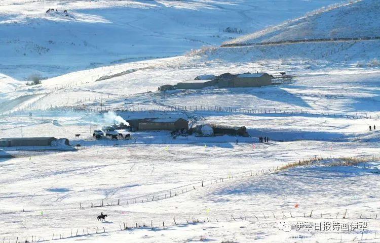 旅游矩阵 | 伊犁的冬天,五彩缤纷